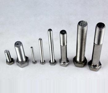Stainless Steel Bolt (HZRL200703845)