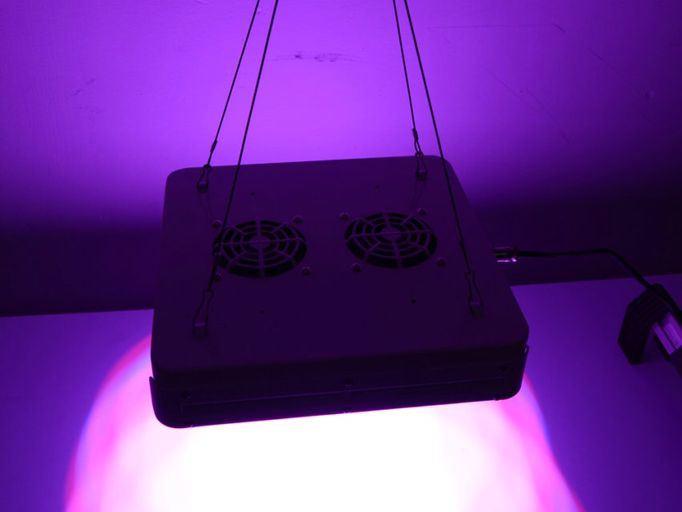 200W Spectrum Epistar Chip LED Grow Light 40X5w