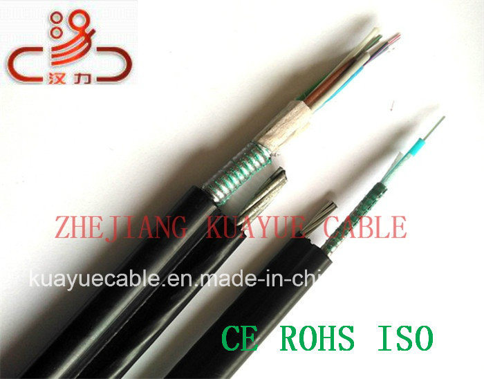 Gystcs Fiber Optic Cable/Computer Cable/Data Cable/Communication Cable/Audio Cable/Connector