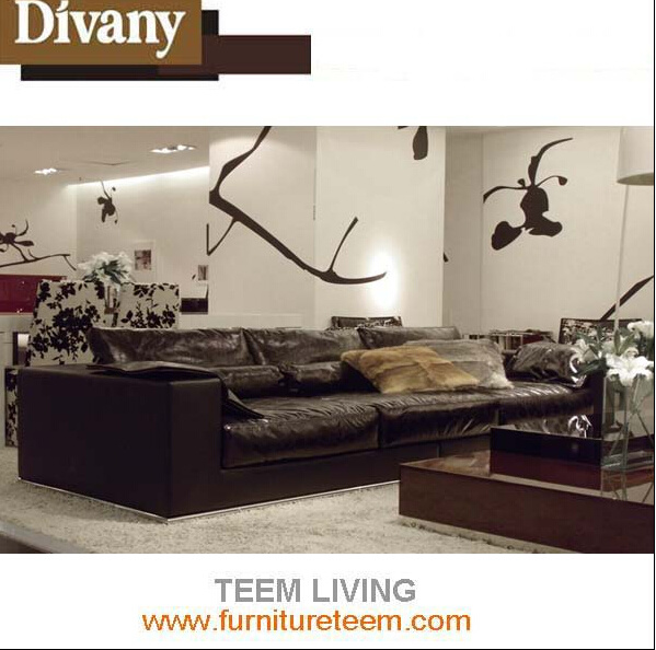 European Style Real Leather Combination Sofa