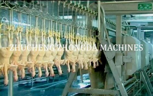 Russian Halal Chicken Duck Abattoir Equipment