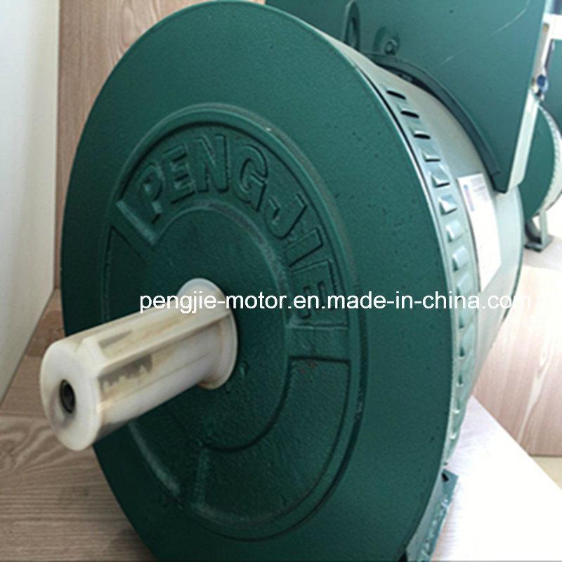 China Supply AC Brush and Brushless Alternator
