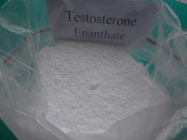 Steroid Powder Test Enan Testosterone Enanthate