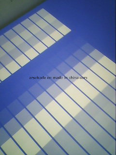 UV-Ink Resistant Double-Layer Coating Thermal CTP