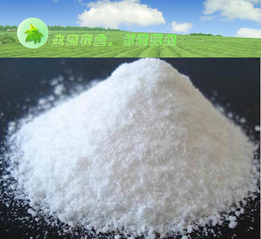 Dl-Methionine Feed Grade Additives High Vitamin
