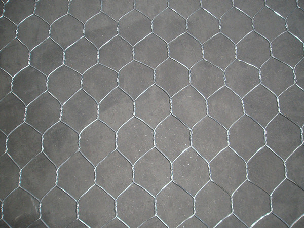 Hexagonal Fencing Wire Netting for Farm
