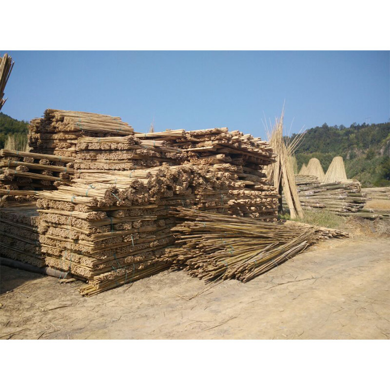 Nature Dry Straight Rattan Bamboo Canes for Sale