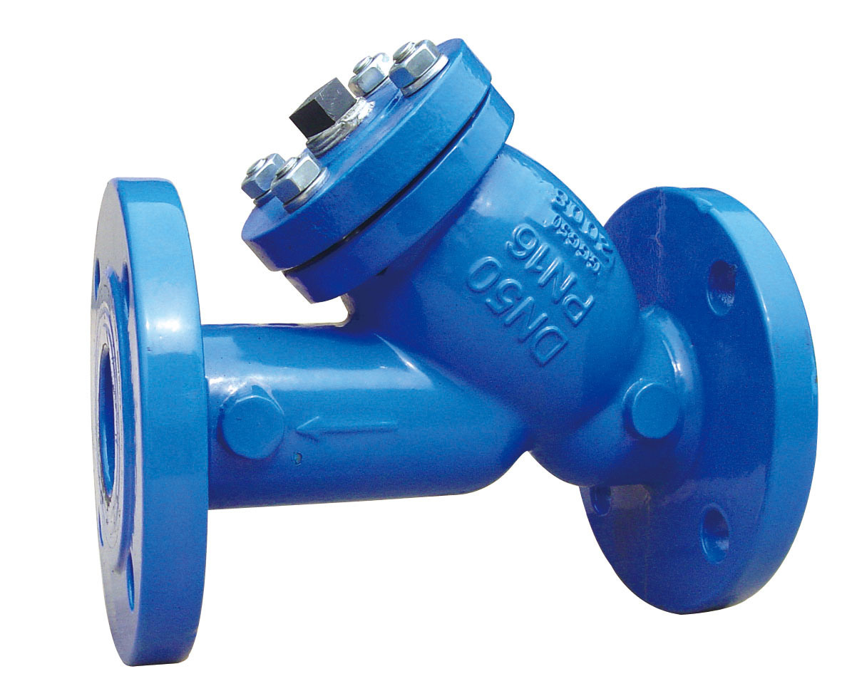 The Flanged Y Type Strainer