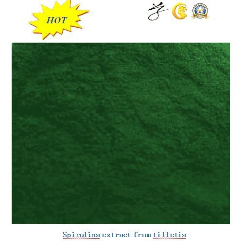 Natural Spirulina Powder From Tilletia with Best Quality