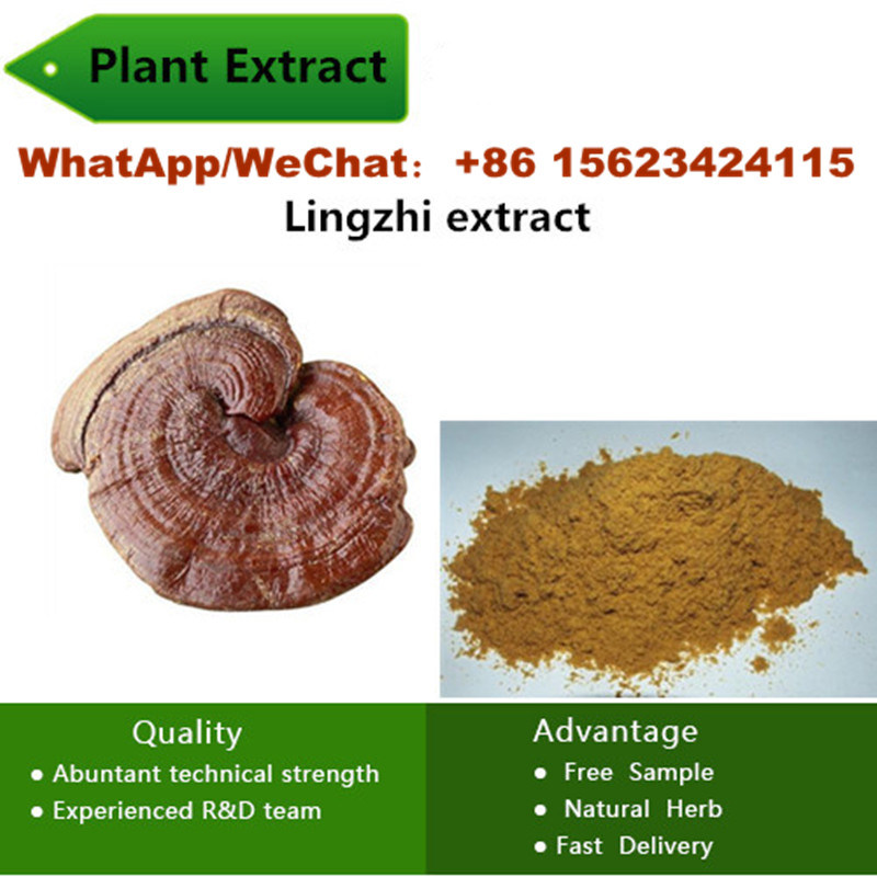 China Plant Supply Triterpenes 10%-50% Health Food Raw Materials Lingzhi Extract