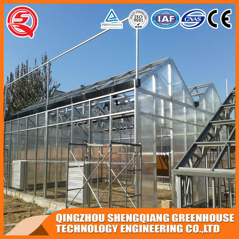 Agriculture Multi Span Polycarbonate Sheet Greenhouses for Planting