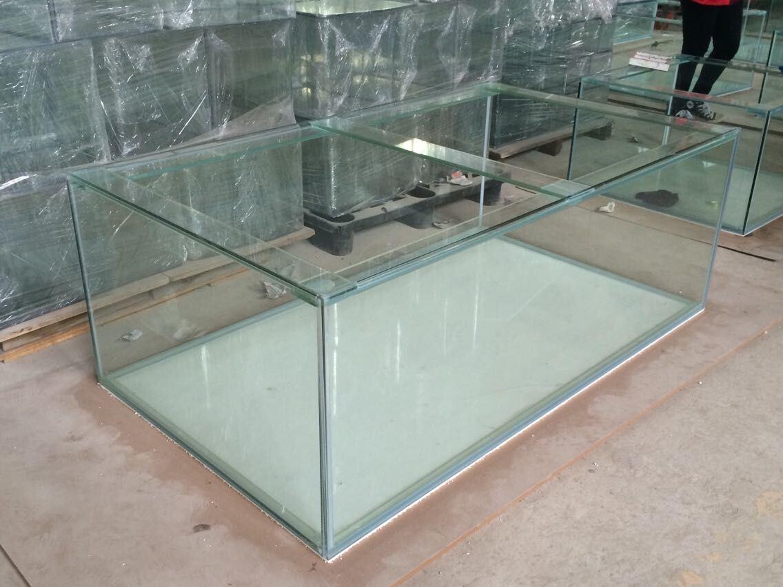 Custom 5mm-19mm Ultra Glass Aquarium Fish Tank