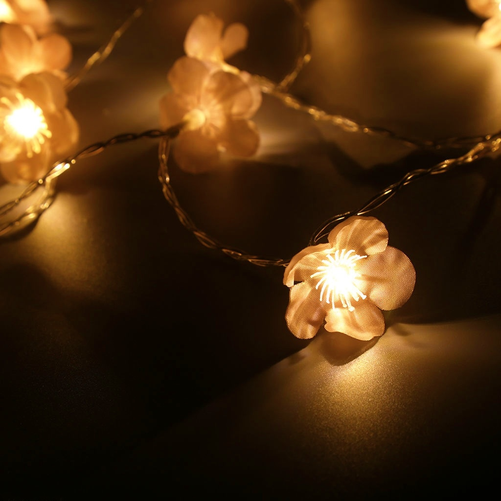 Indoor 6.6 Feet 20 LED Plum Blossom String Light Clear Wire String Low Voltage Plug Warm White Battery Operated