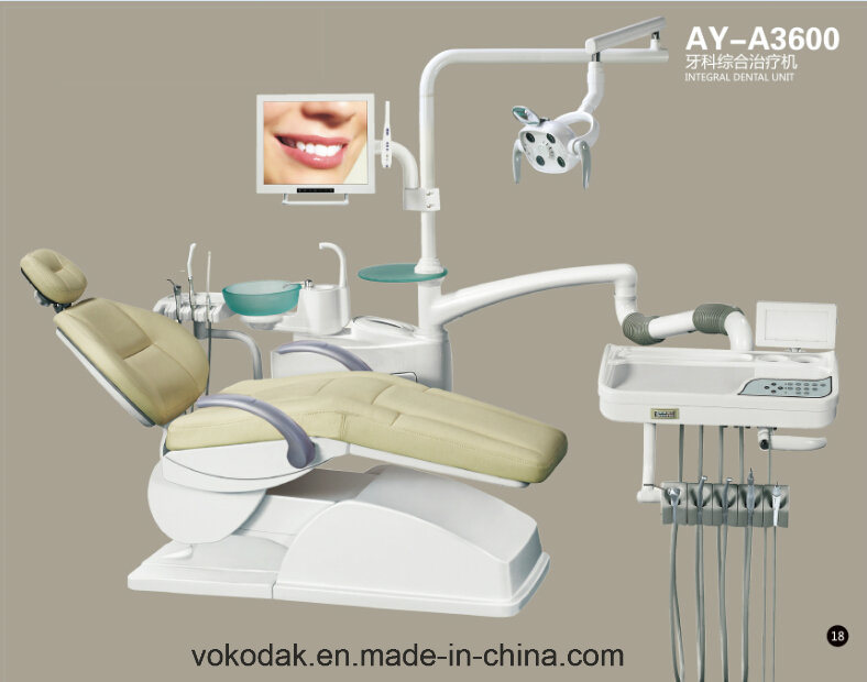 Dental Manufacturer Anya Dental Chair with Ce (AY-A3600)