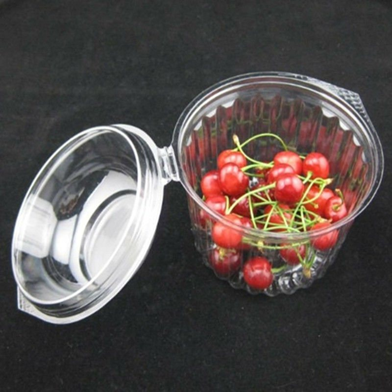 Fruit Plastic Packaging Box