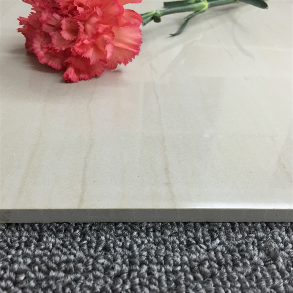 Soluble Salt Wall and Floor Porcelain Ceramics Tile (6S005)