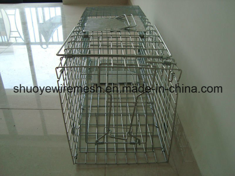 Humane Rabbit Rat Mink Grey Squirrel Small Raccoon Possum Cat Folding Live Animal Cage Trap