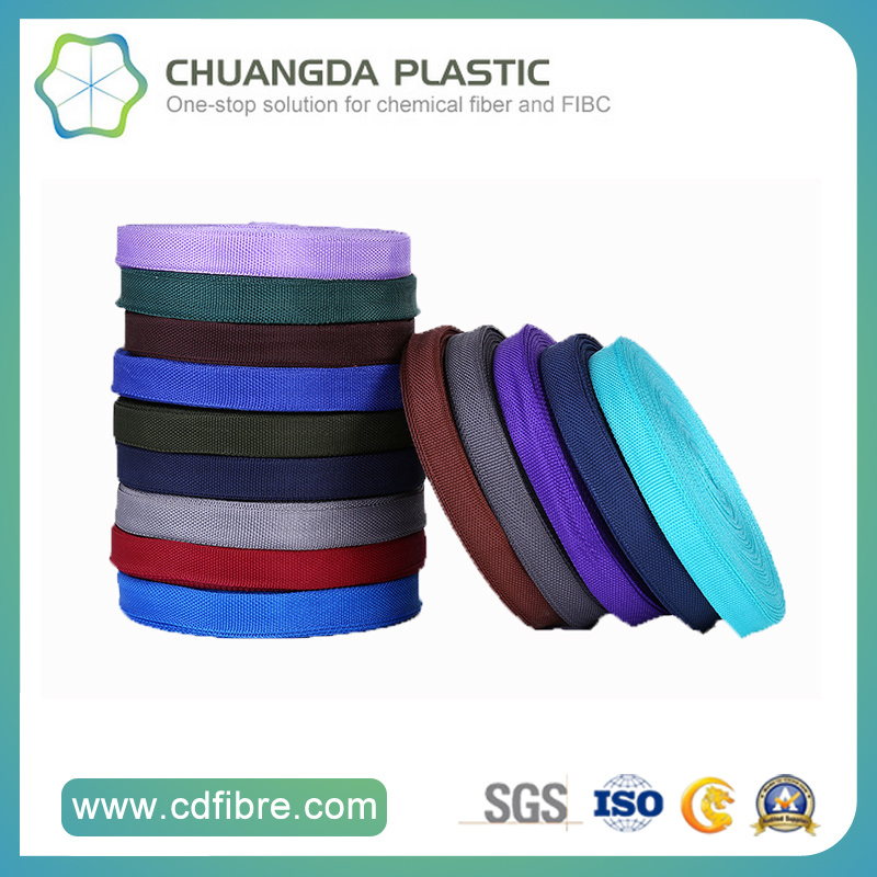Factory Price Black Polypropylene/PP Webbing for Outdoor Supplies