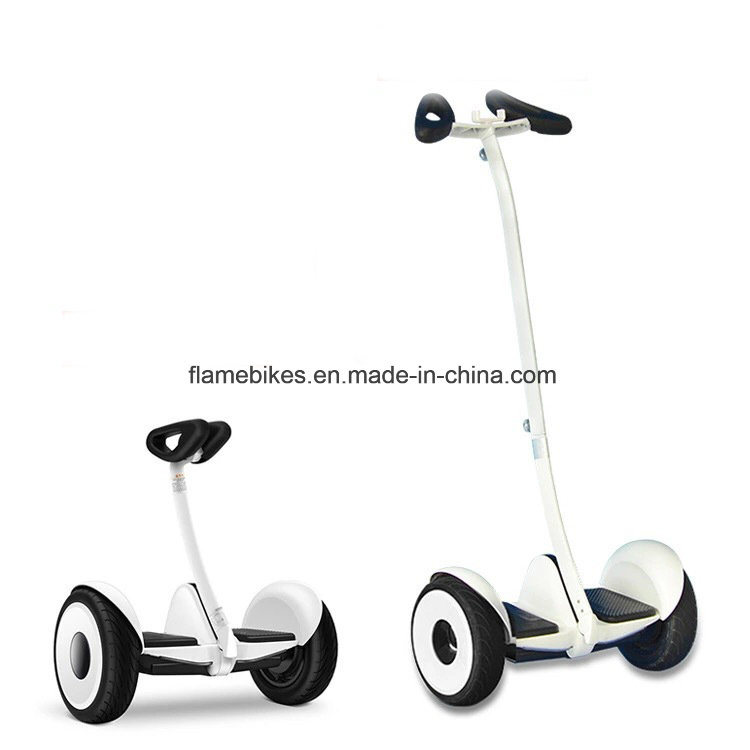 700W Electric Self Balance Scooter with Handle Bard