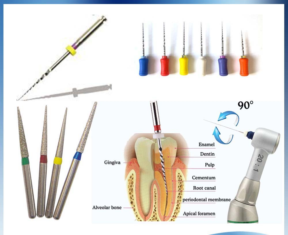 Dental Endo Niti Rotary Root Canal Files 25mm