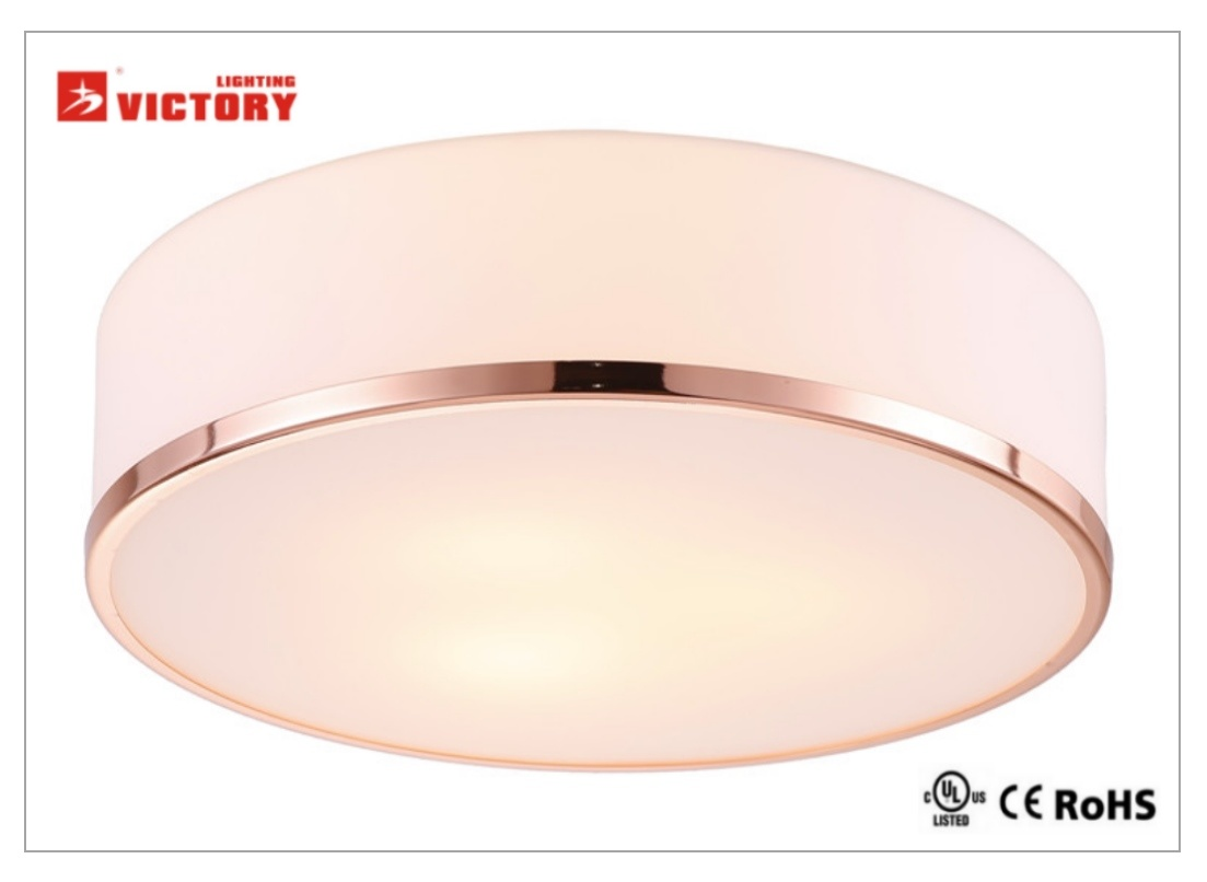 Waterproof Modern Round LED Ceiling Light Recessed Lighting/Fixture LED Pendant Lamp