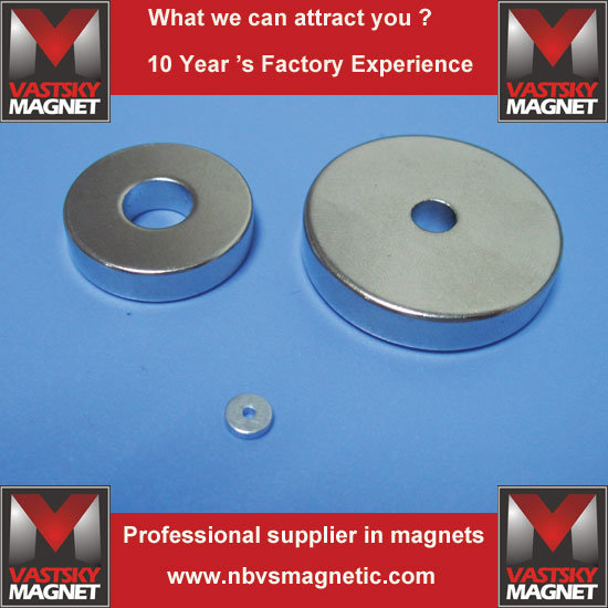 Permanent Strong Zn Ni Radial Ring Neodymium Magnet