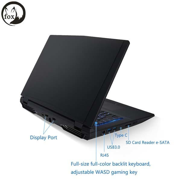Fox Gaming Laptops Intel Core I7 6700k Nvidia Gtx-970m Type-C 17.3inch FHD 16GB DDR4 256GB M. 2 SSD, HDD 1tb Win10