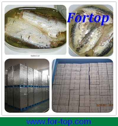 New Crop Canned Sardine Fish in Oil/in Brine/in Tomato Sauce