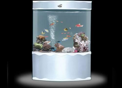China cylindrical decoration aquariums cylindrical fish for Cylindrical fish tank