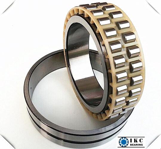 SKF Nn3008 Double Row Cylindrical Roller Bearing Nn3010, Nn3012, Nn3006, Nn3014, Nn3016
