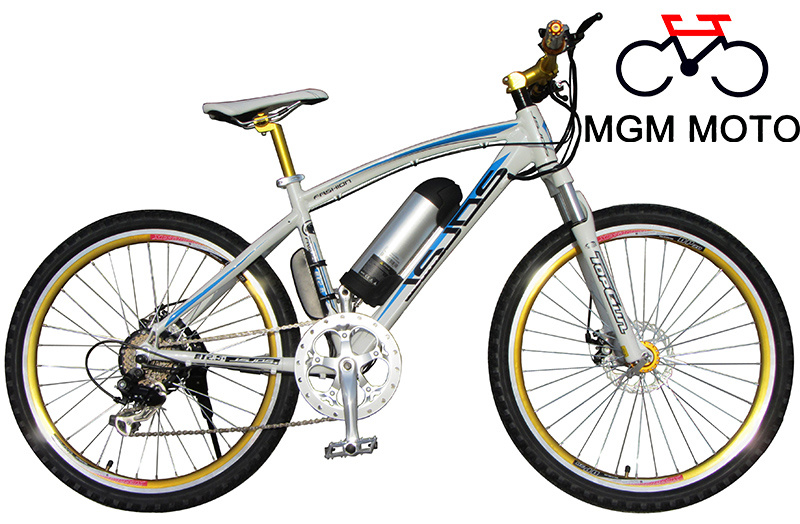 Golden Wheel Electric Bicycle for Sport