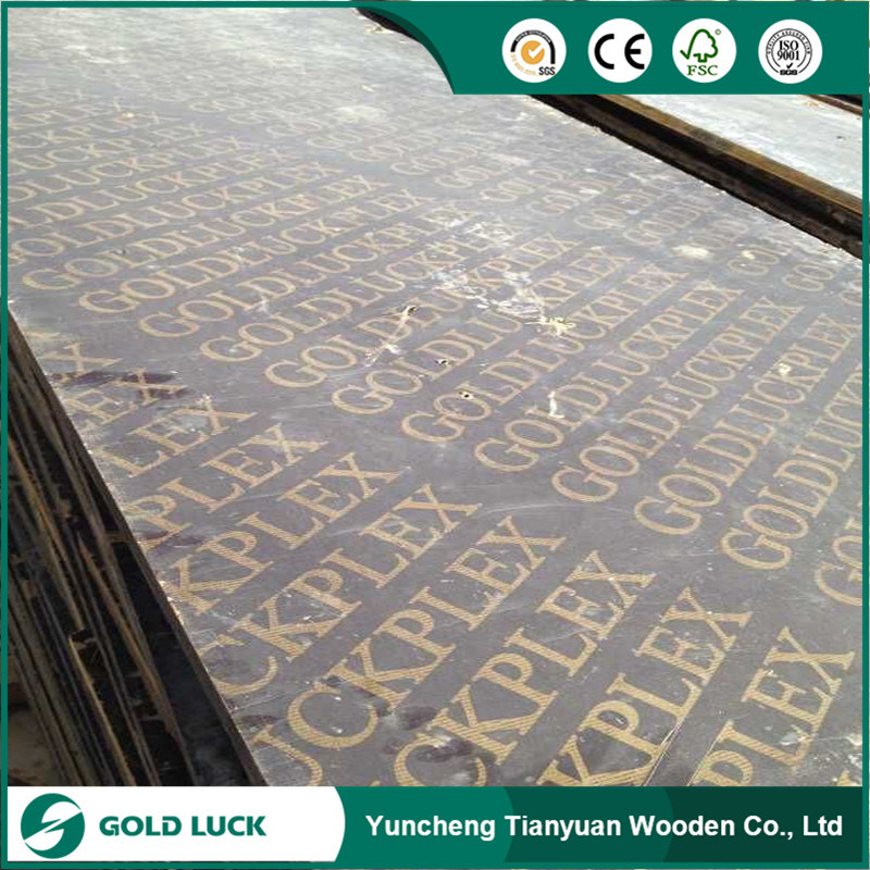Waterproof Film Faced Plywood for Construction Formwork