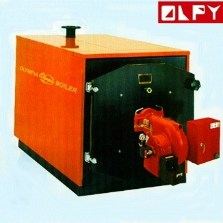 Family Use Steam Boiler with Good Quality