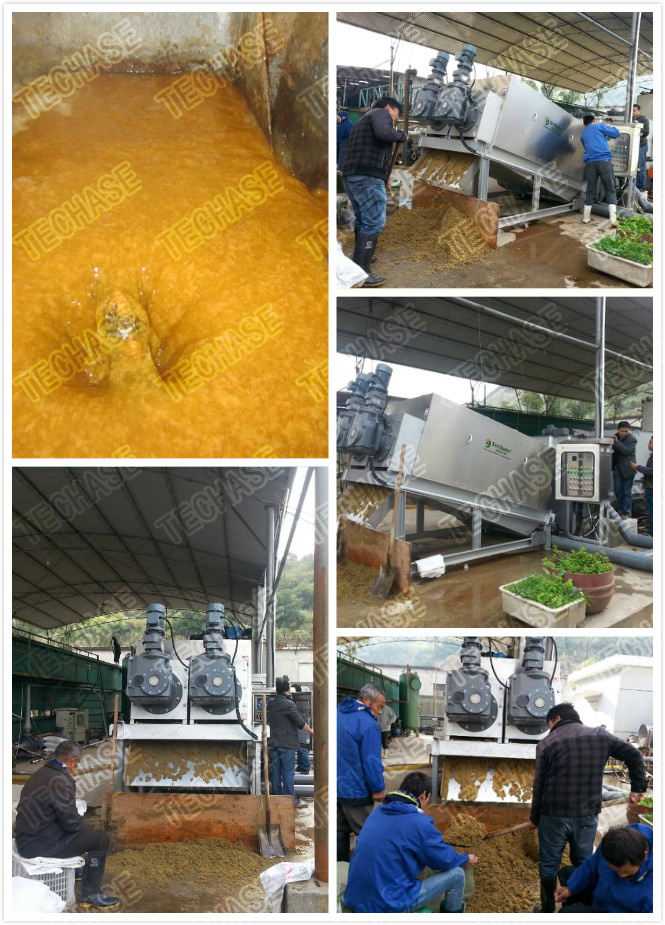 Food Wastewater Treatment Plant with Sludge Dewatering Machine