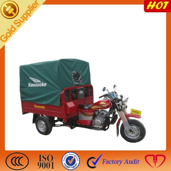 Cargo & Passenger 3 Wheel Electric Trike Tricycle Motorcycle