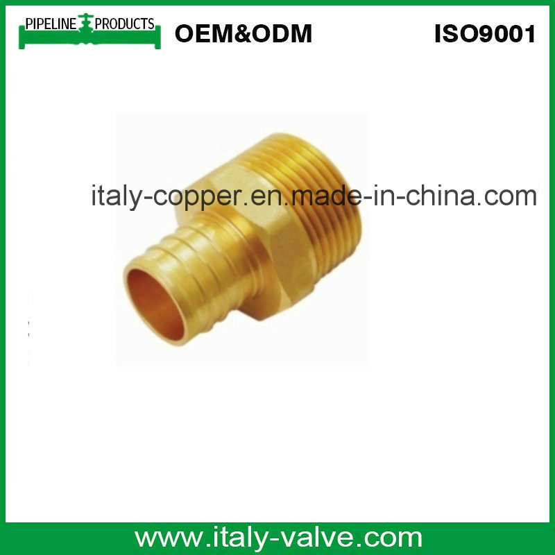 OEM&ODM Quality Brass Reduce Male Adaptor /Male Fitting (AV9031)