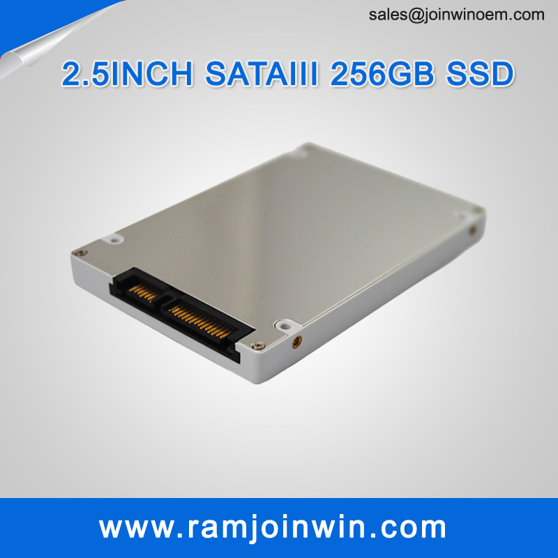 2.5inch Sm2246xt SSD Hard Drive 256GB Factory in China