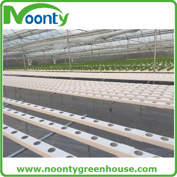 Complete Hydroponics System for Large Farm
