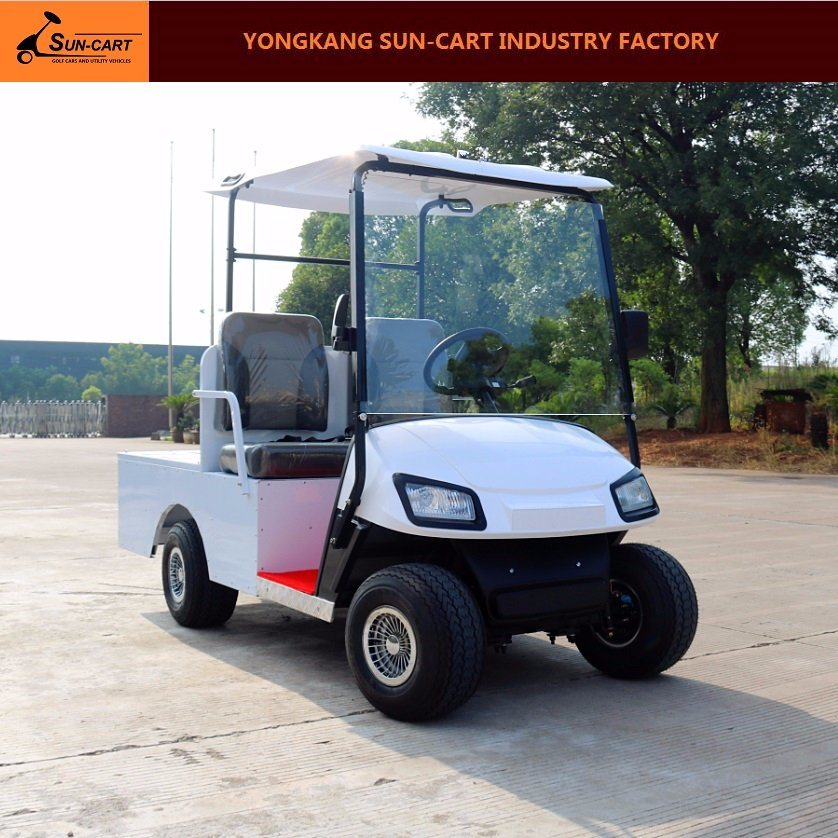 2 Seater Dustomized Electric Transport Golf Cart