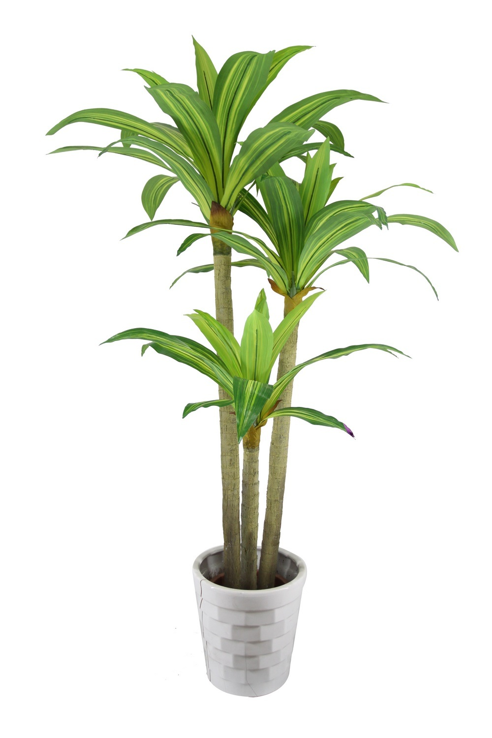 China artificial dracaena fragrance decorative houseplant for Plante dracaena