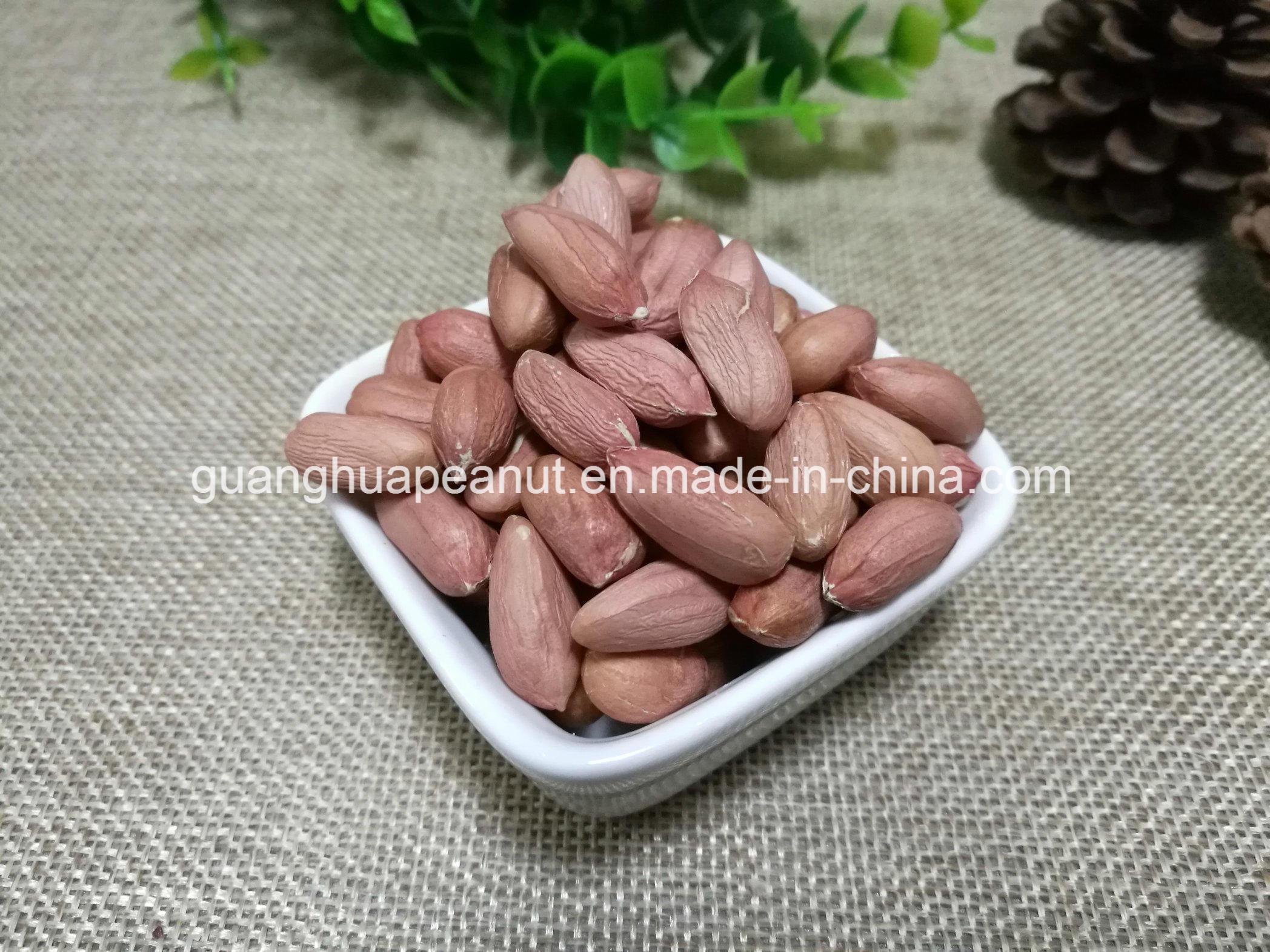 Hot Sale Peanut Kernel New Crop