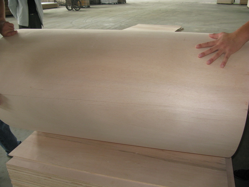 Hot Commercial Plywood Flexible Plywood / Bending Plywood