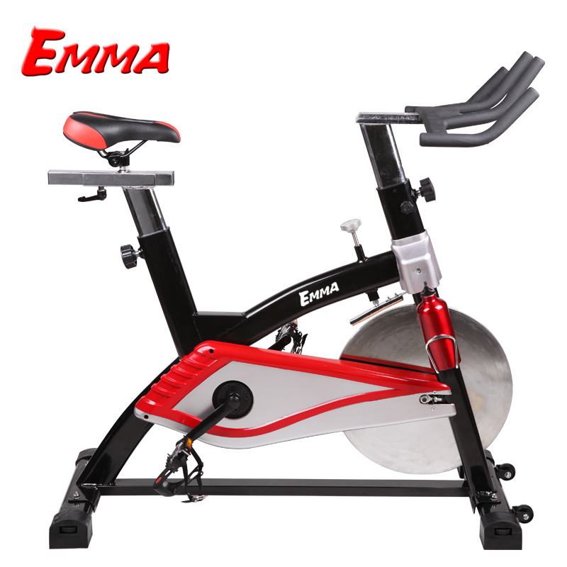 Spinning Bike (AM-S3001)