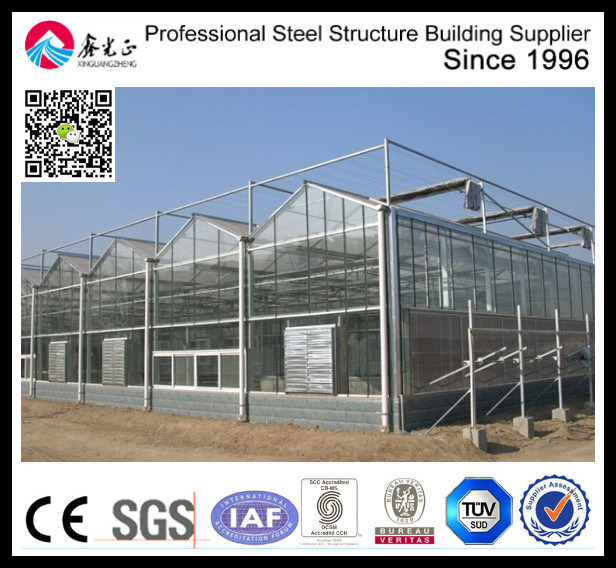 Vegetable Glass Greenhouse