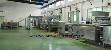 Multi Function Biscuit Sheeting Line