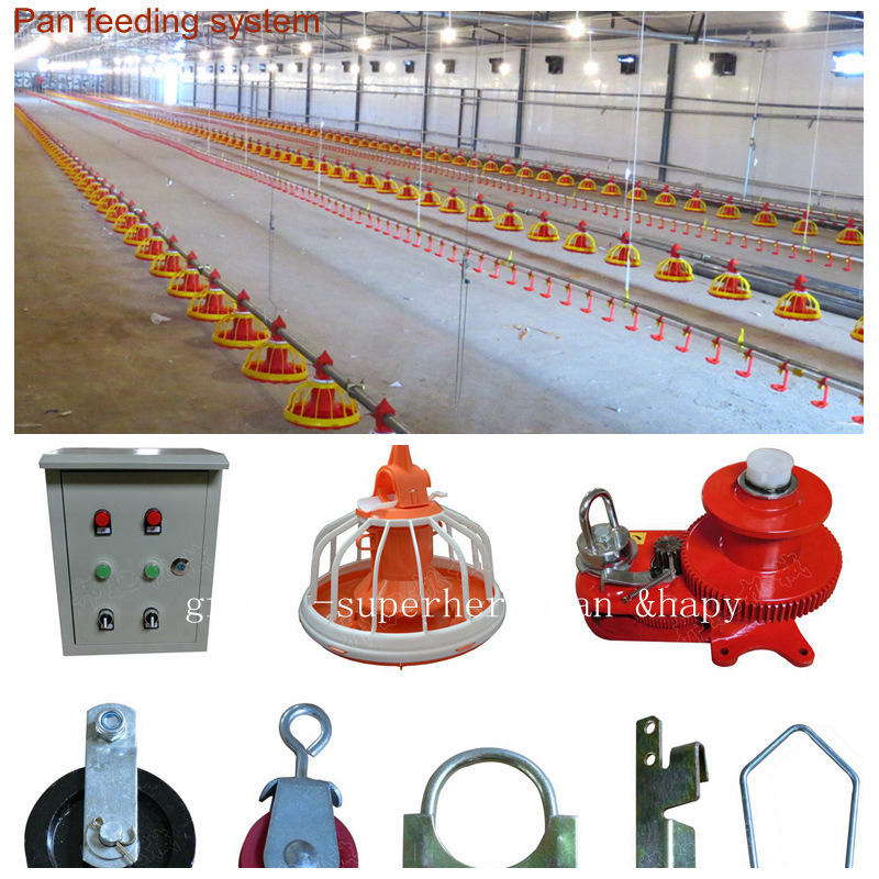 Automatic Poultry Equipment for Broiler Production