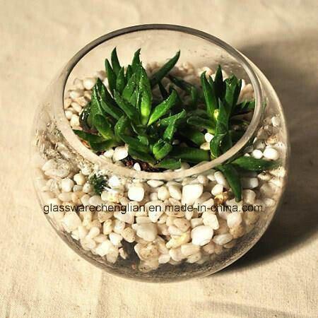 Clear Hand Made Glass Bowl Vases (V-111)