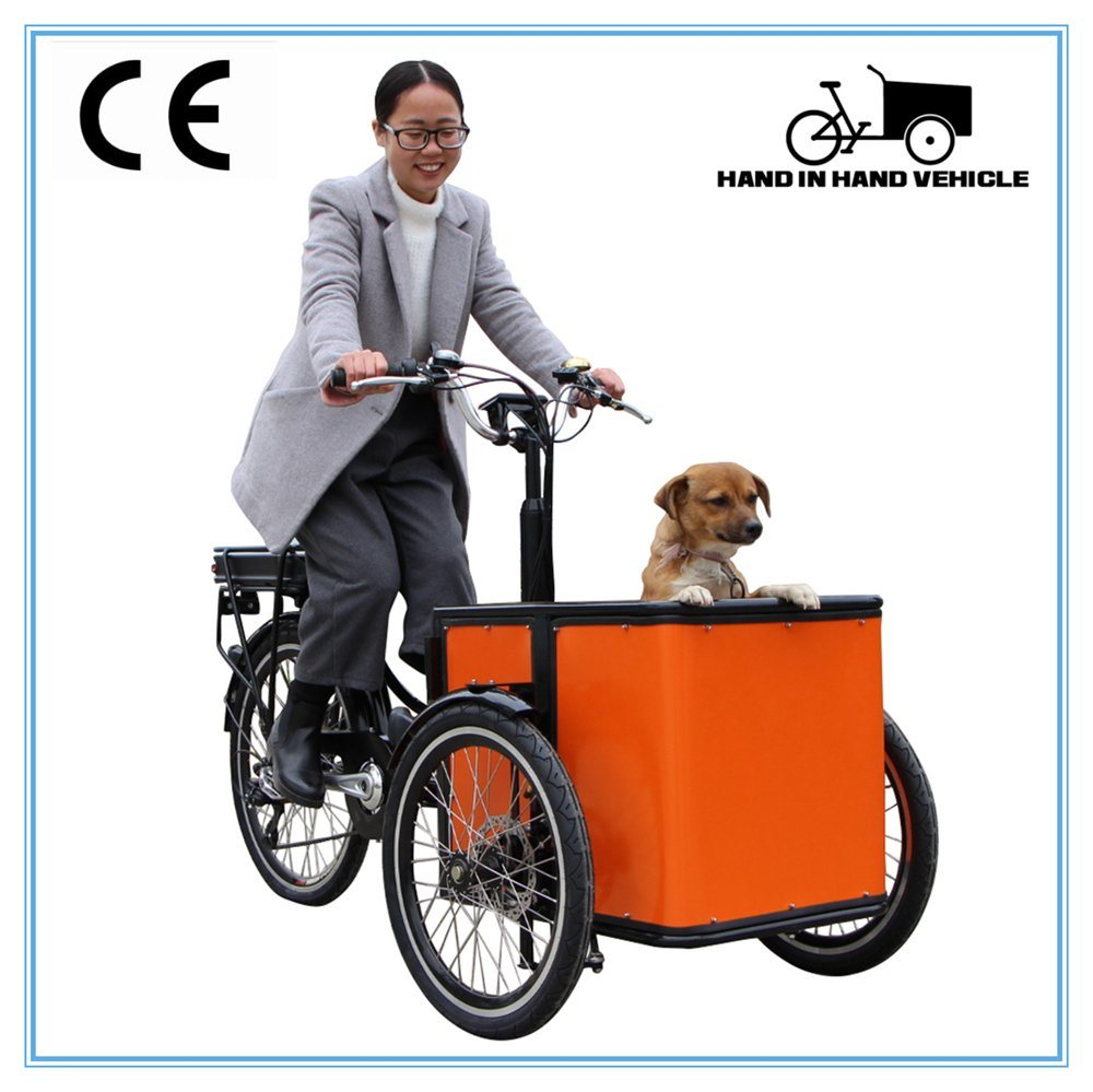 New Model Bakfiets Three Wheel Tricycle Cheap Electric Cargo Bike for Sale