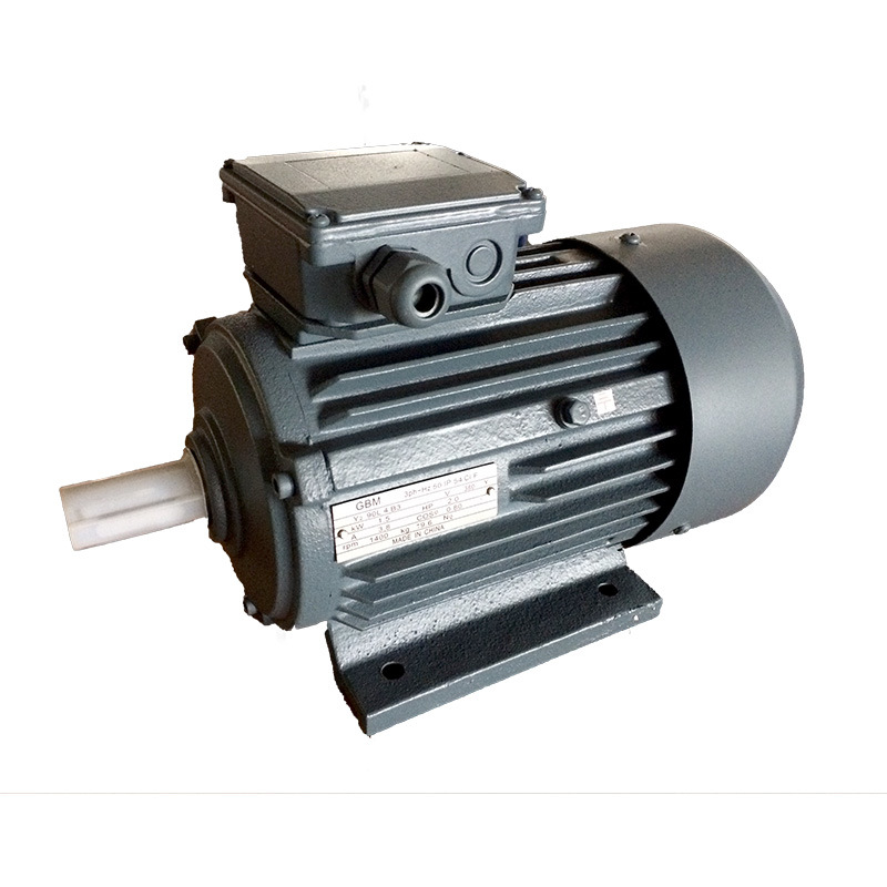 Tbyl Series Three-Phase Asynchronous Motor