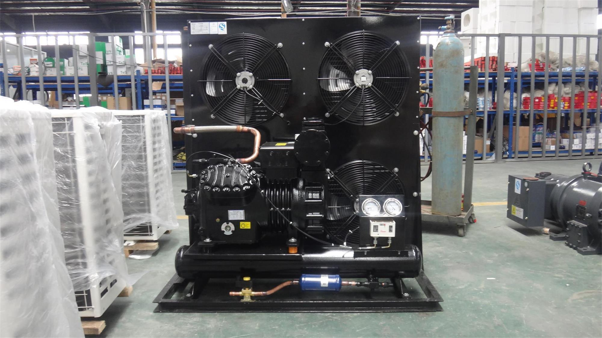 China Hot Sale Low Temperature Air Cooled Condensing Unit for Freezer Room